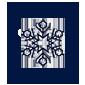 Зимнее лого
