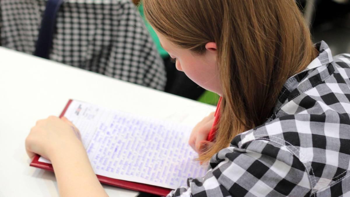Девочка в клетчатой рубашке пишет эссе в Германии