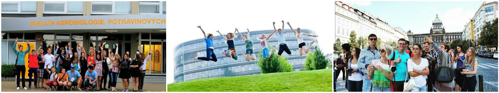 коллаж дети в языковых лагерях в Чехии