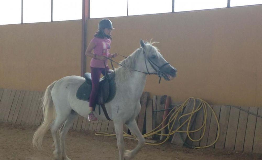 верховая езда в лагере Francisco de Vitoria University (Madrid), Enfocamp