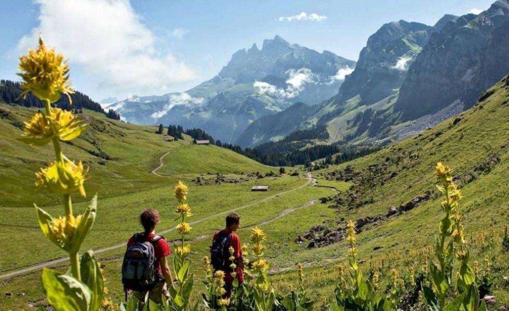 прогулка в школе Ecole Nouvelle de la Suisse Romande