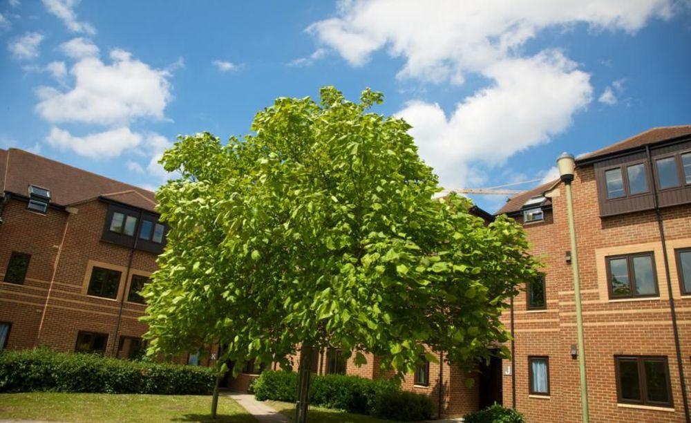 Резиденция Kings Summer Oxford
