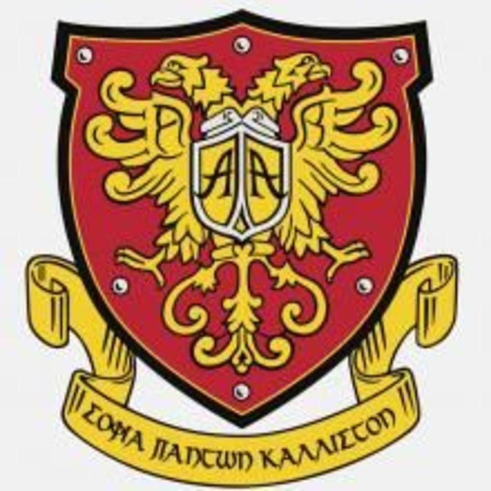 "logo American Academy Limassol - компания ""Аспект"""