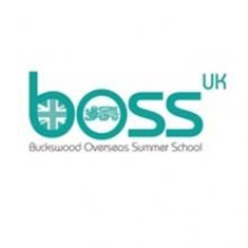 Логотип Buckswood Summer School. Аспект - Образование за рубежом.
