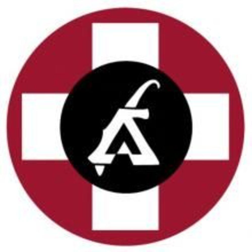 Логотип Leysin American School