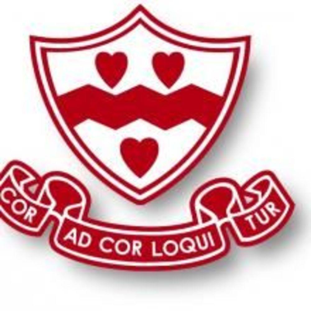 Логотип The Newman School