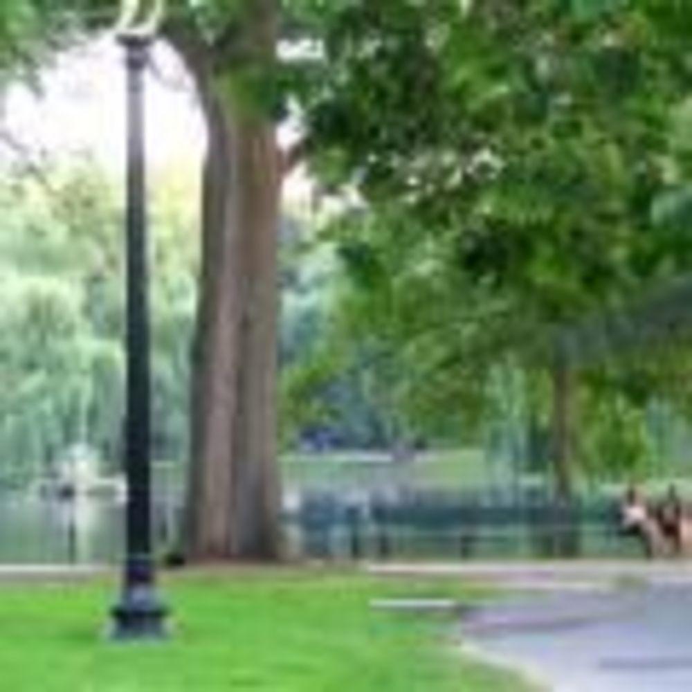 прогулка по парку в лагере FLS Boston