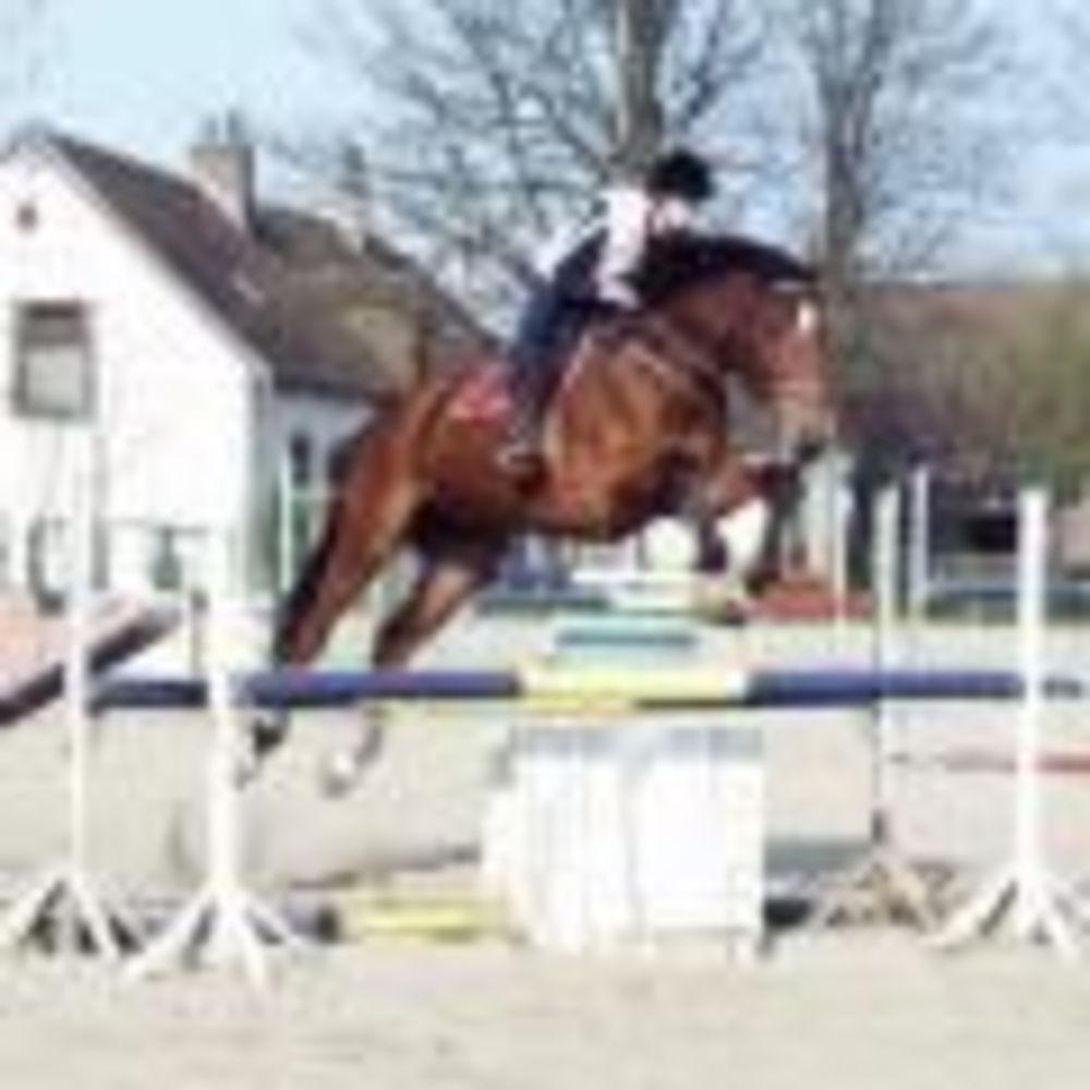 верховая езда в школе Ecole Des Roches