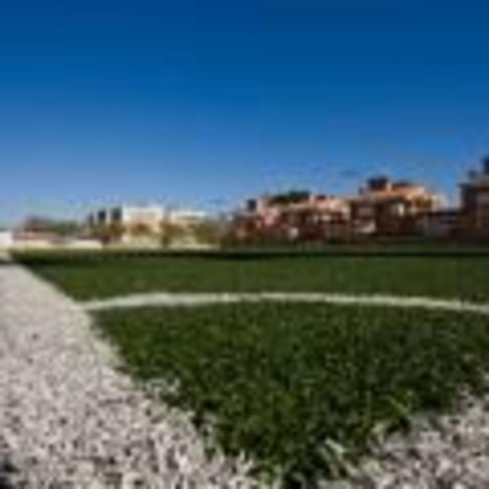 футбольное поле на территории школы Caxton College