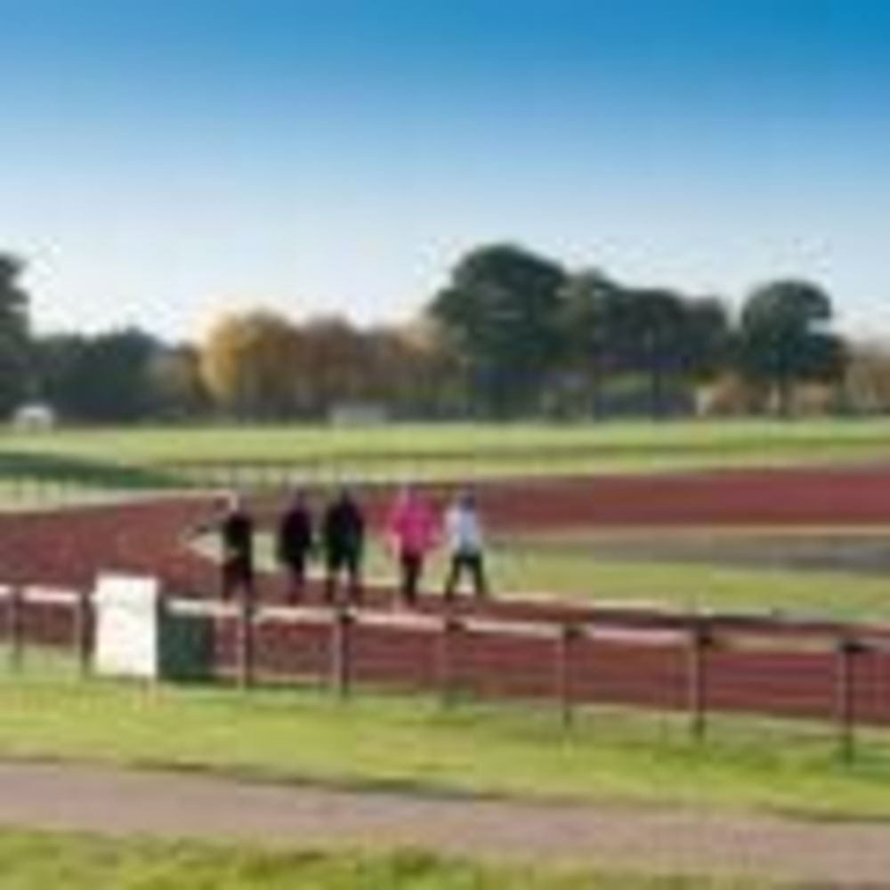 ACS Cobham стадион