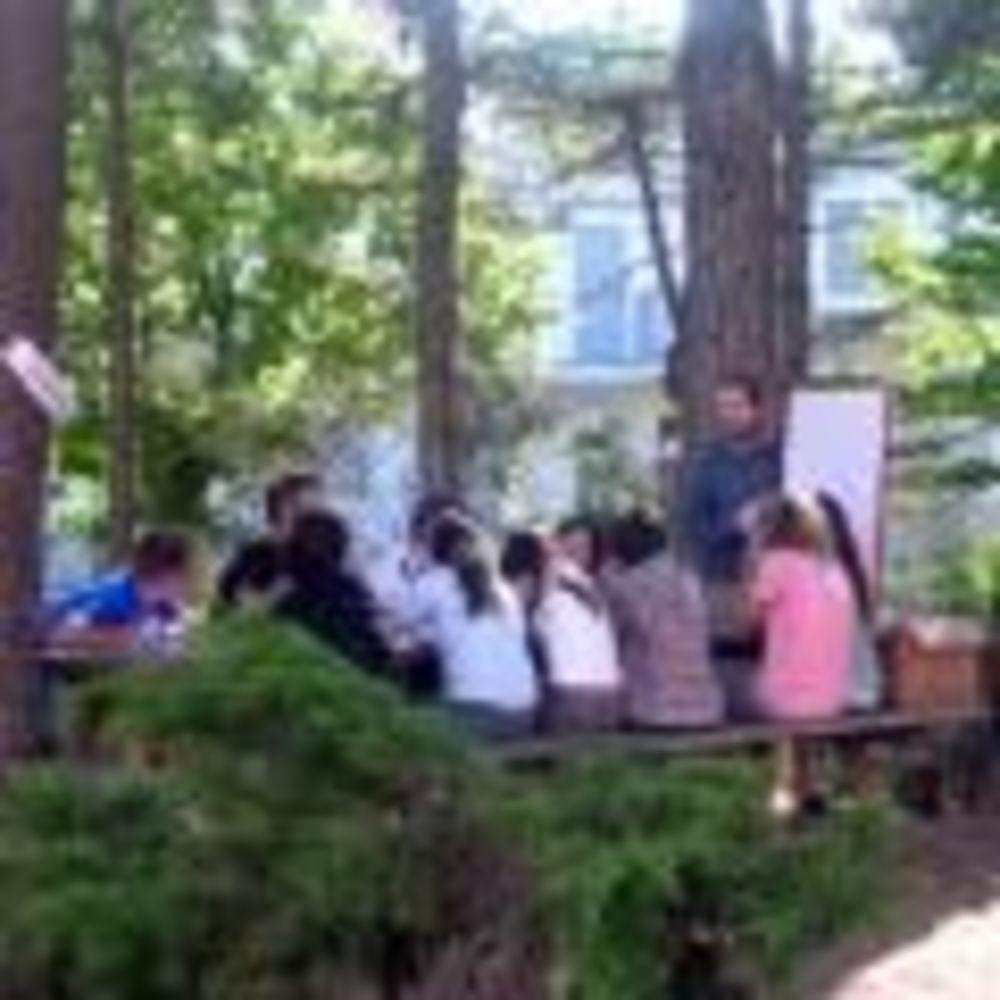 занятия в лесу Linguaviva Summer Camp, Lignano