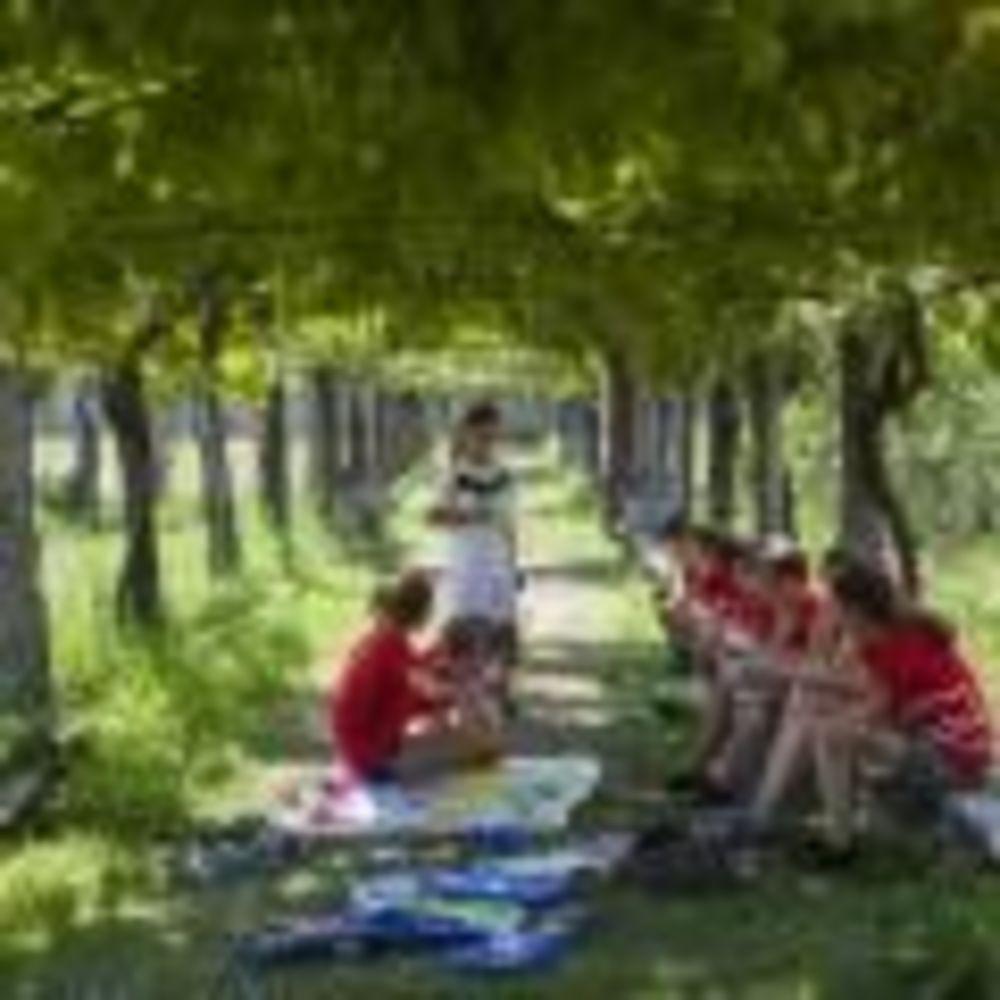 развлечения Collegio Papio (Ascona), Alpadia Summer Camps