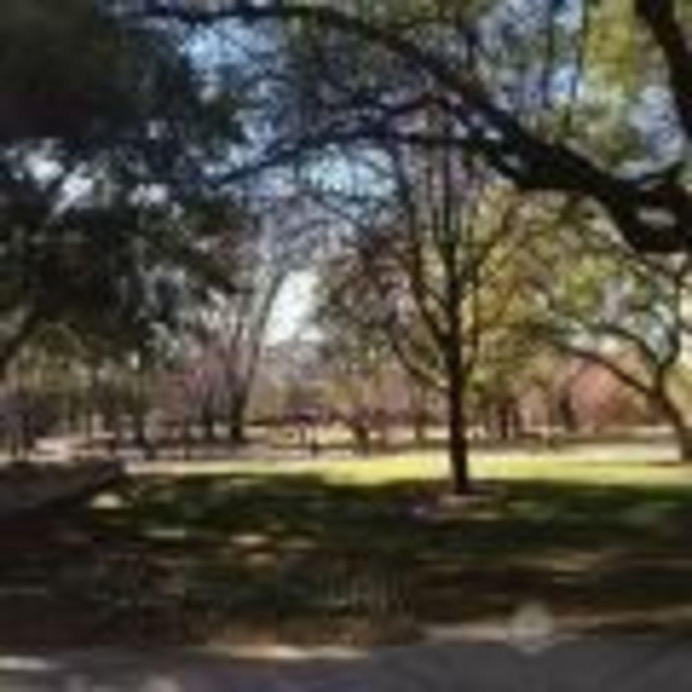 лагерь FLS территория California State Univeristy