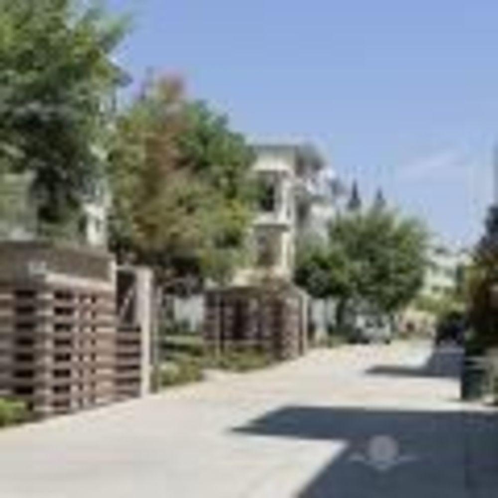 лагерь FLS прогулка по кампусу California State Univeristy