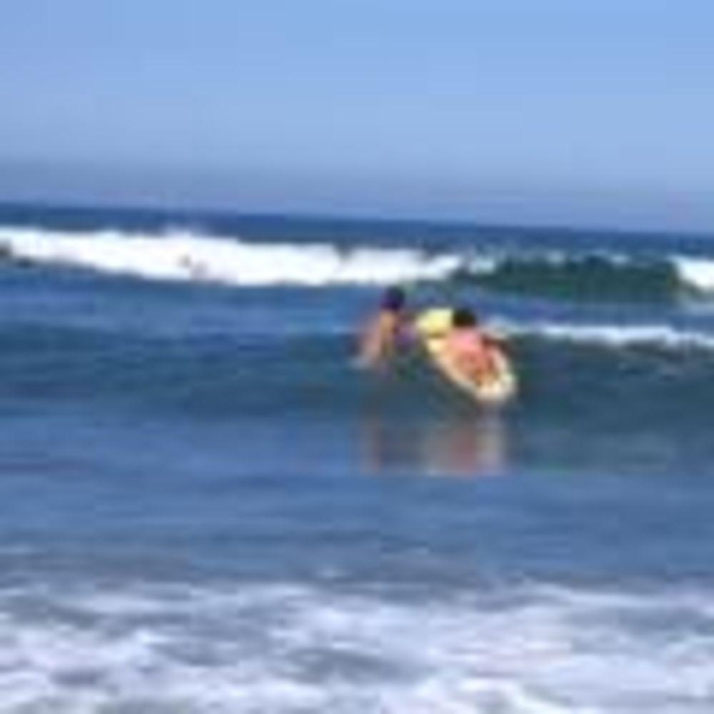 лагерь FLS California State Univeristy занятия по серфингу