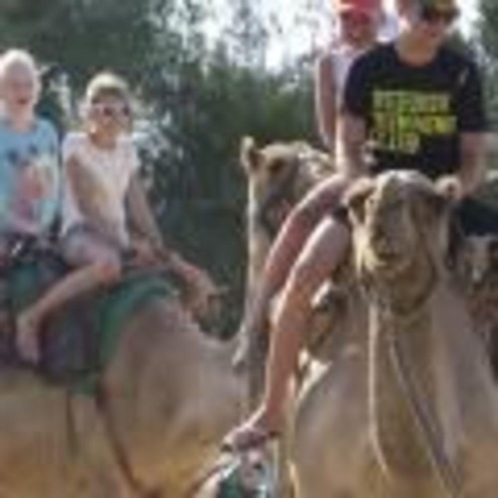 English Quest Camp дети катаются на верблюдах