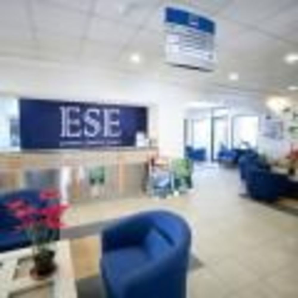 European School of English, ресепшен языковой школы
