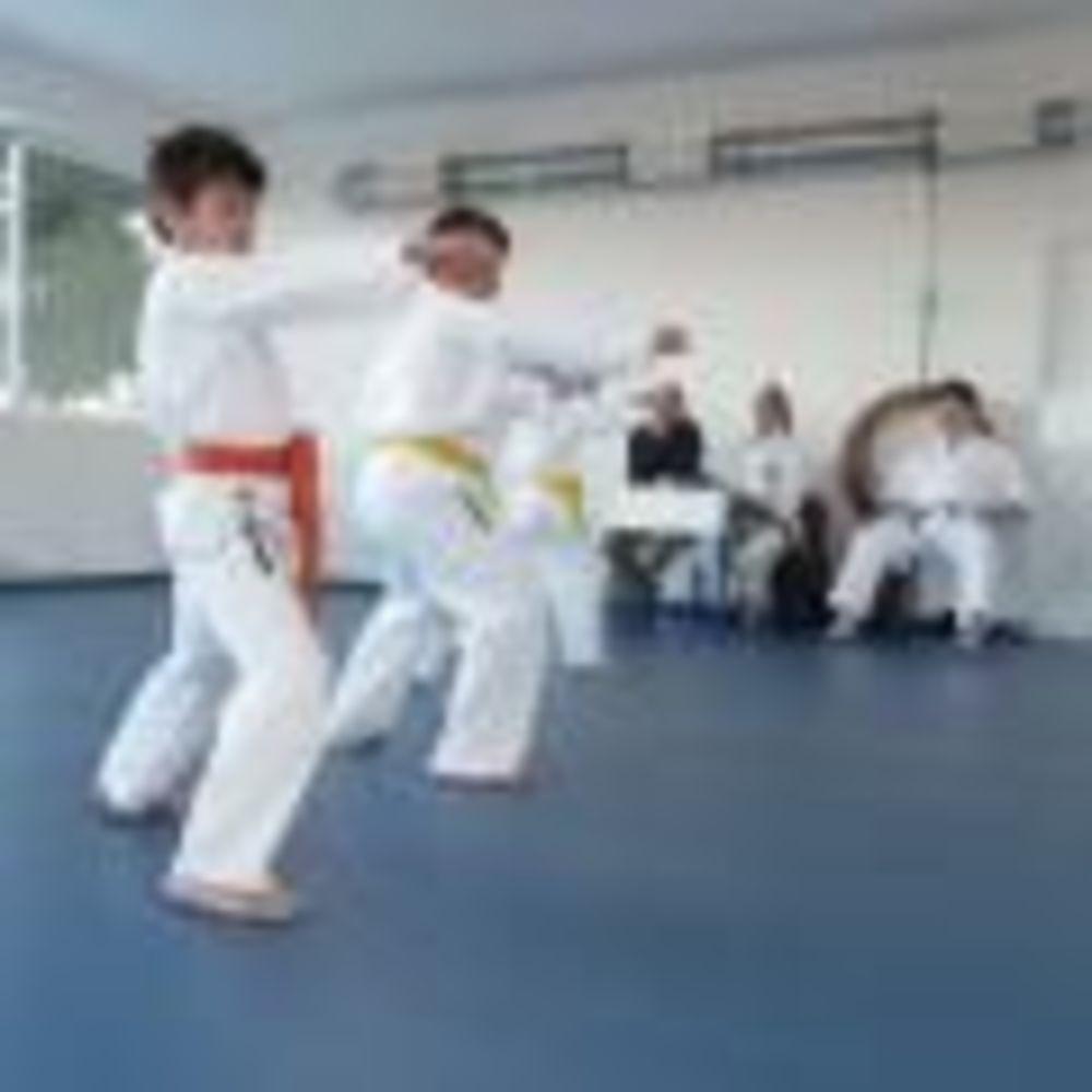 занятия карате в школе Nobel International School Algarve