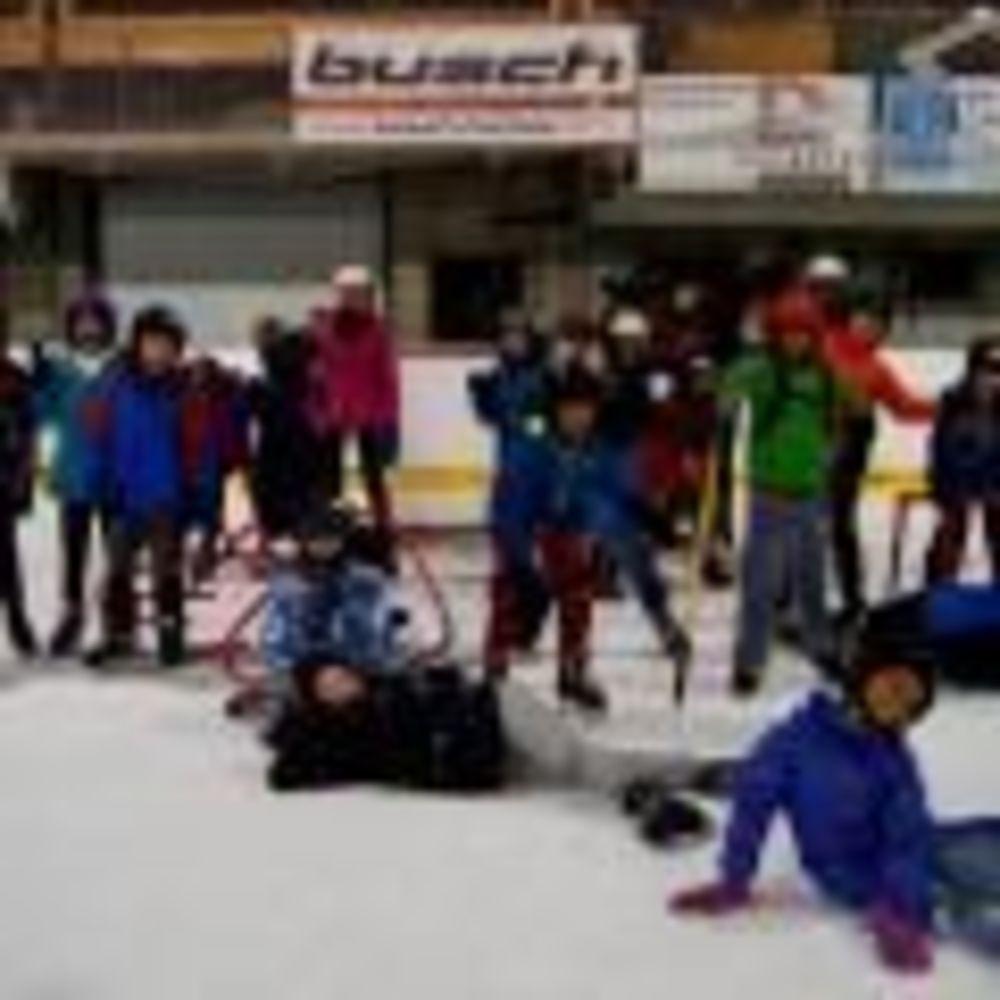 Хоккей Les Elfes