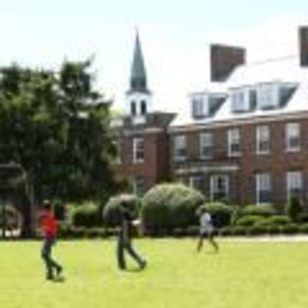 территория школы St Andrew's College