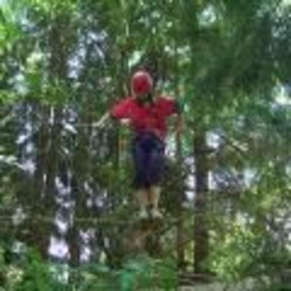 прогулка в лесу в лагере Lindenberg, Humboldt – Institut