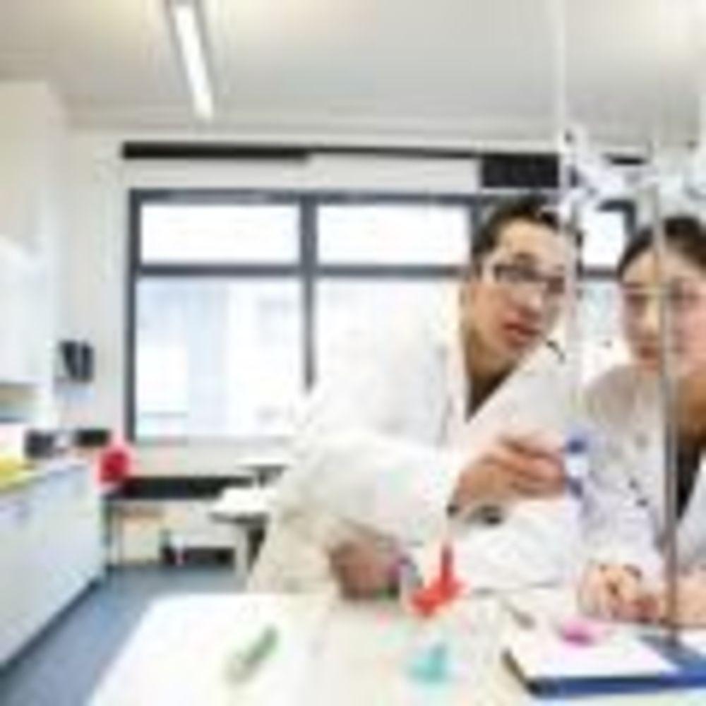 Лабораторія Bellerbys Brighton