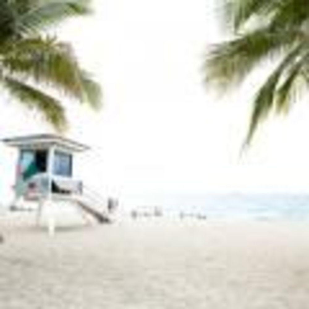 пляж рядом со школой LAL Fort Lauderdale