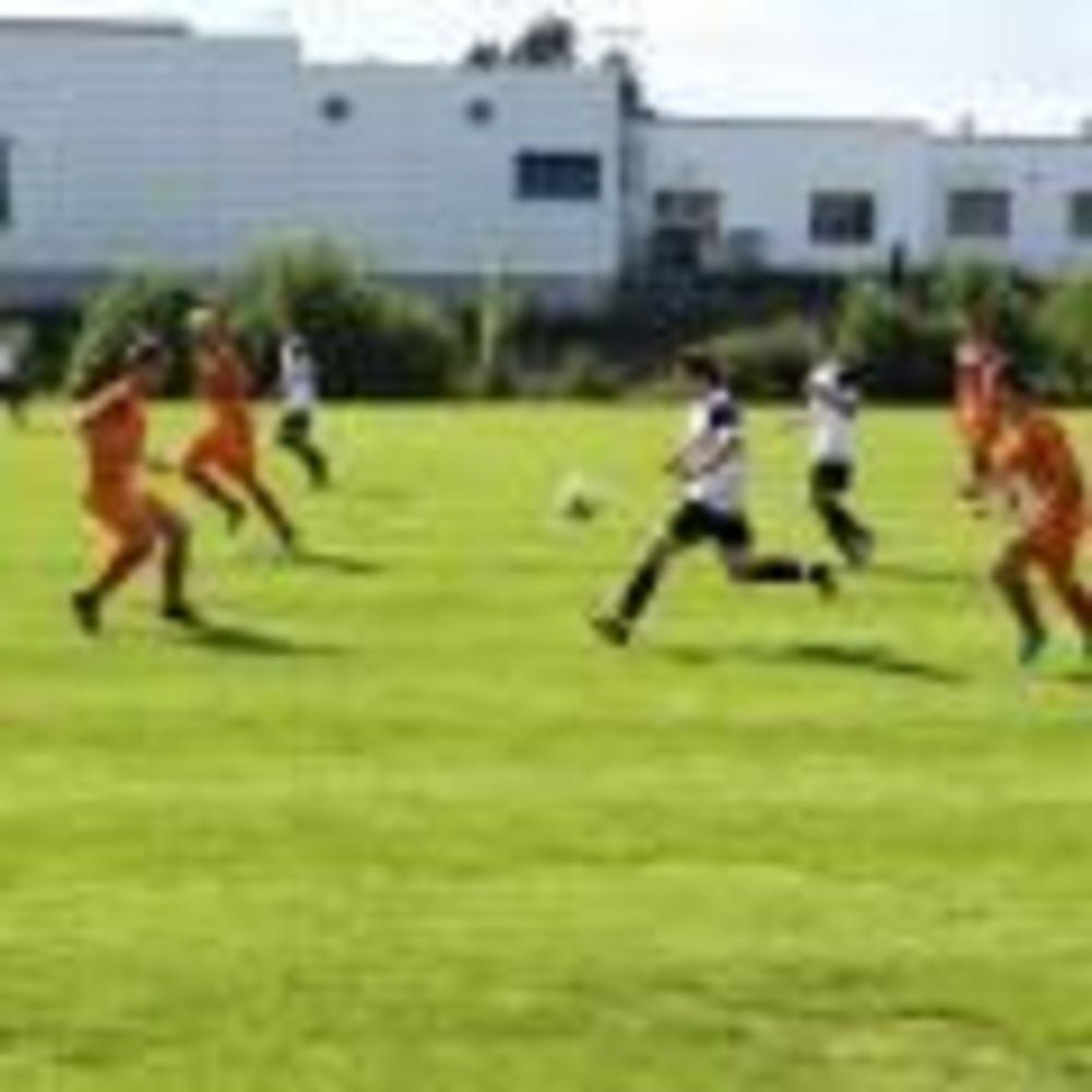 спорт MSM Academy