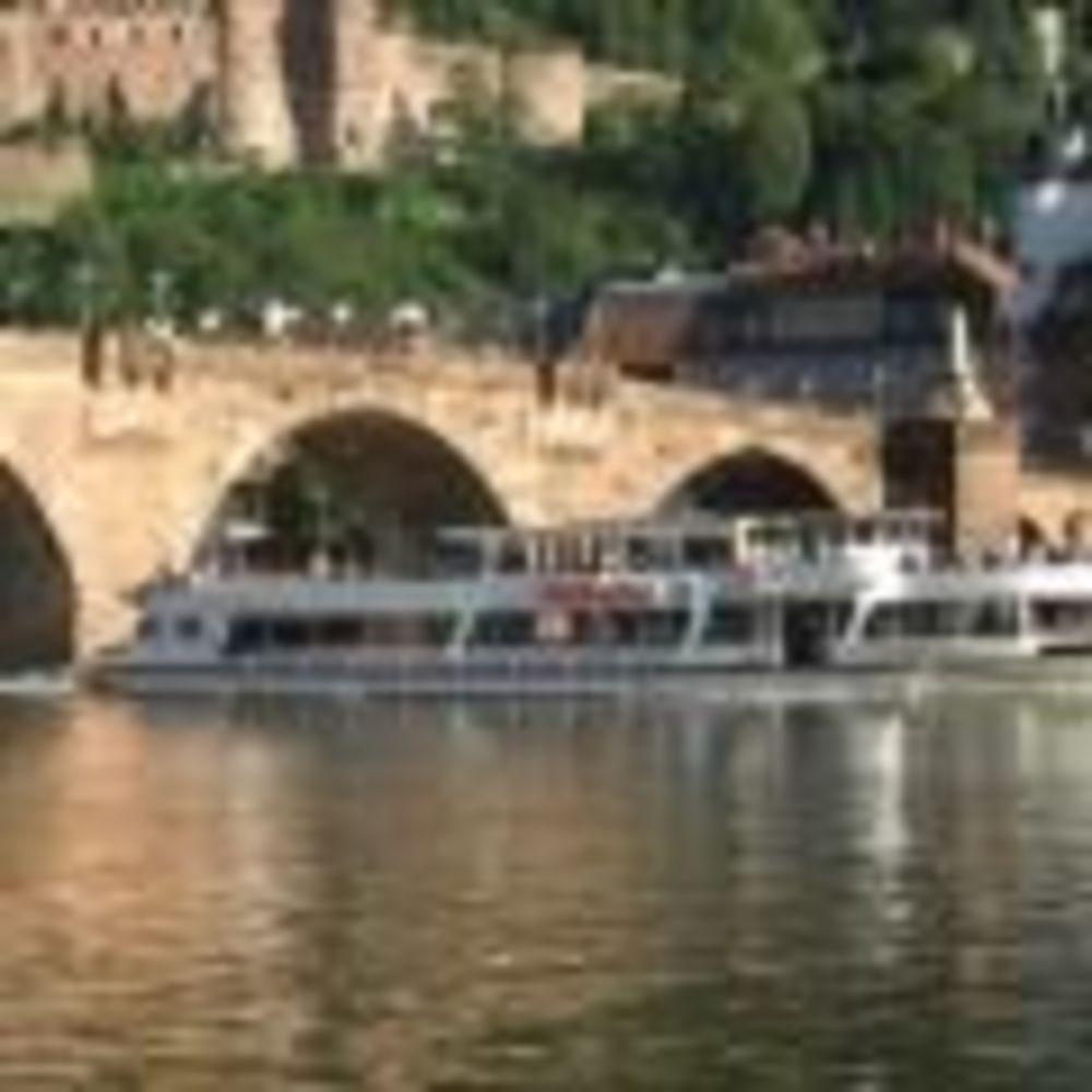 OISE Heidelberg экскурсия по городу