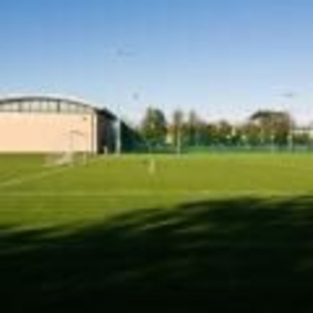 Поле Alexandra College