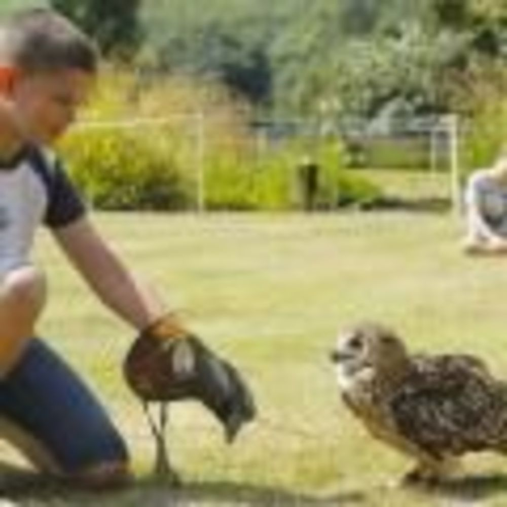 Природа Stowe School