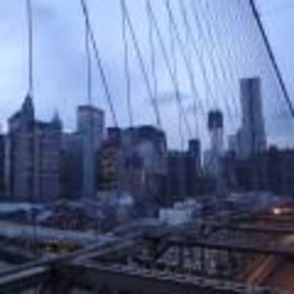 вид на город экскурсия Rennert New York School