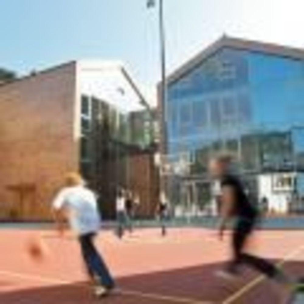 спортивная площадка школы St. Gilgen International