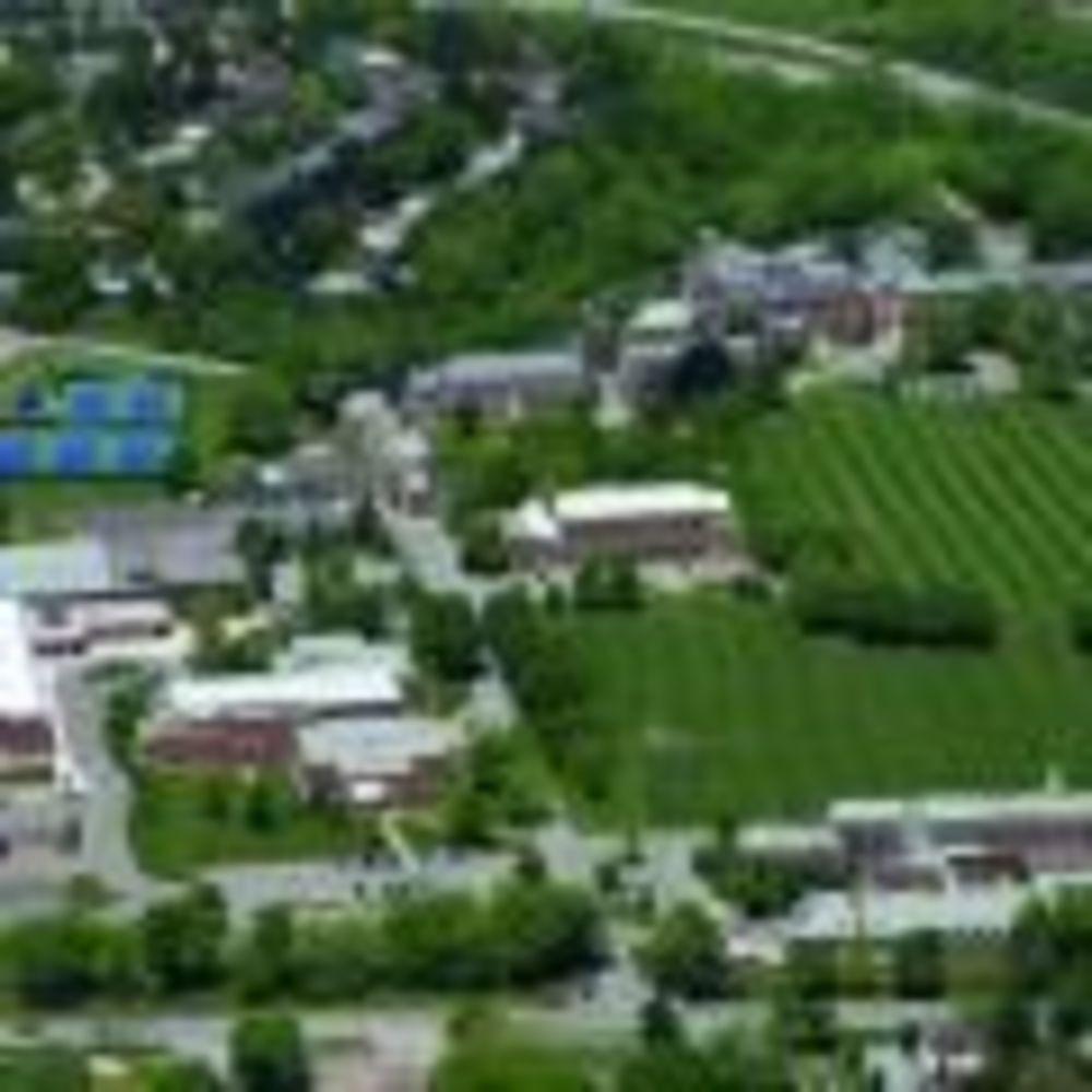 территория школы Ridley College