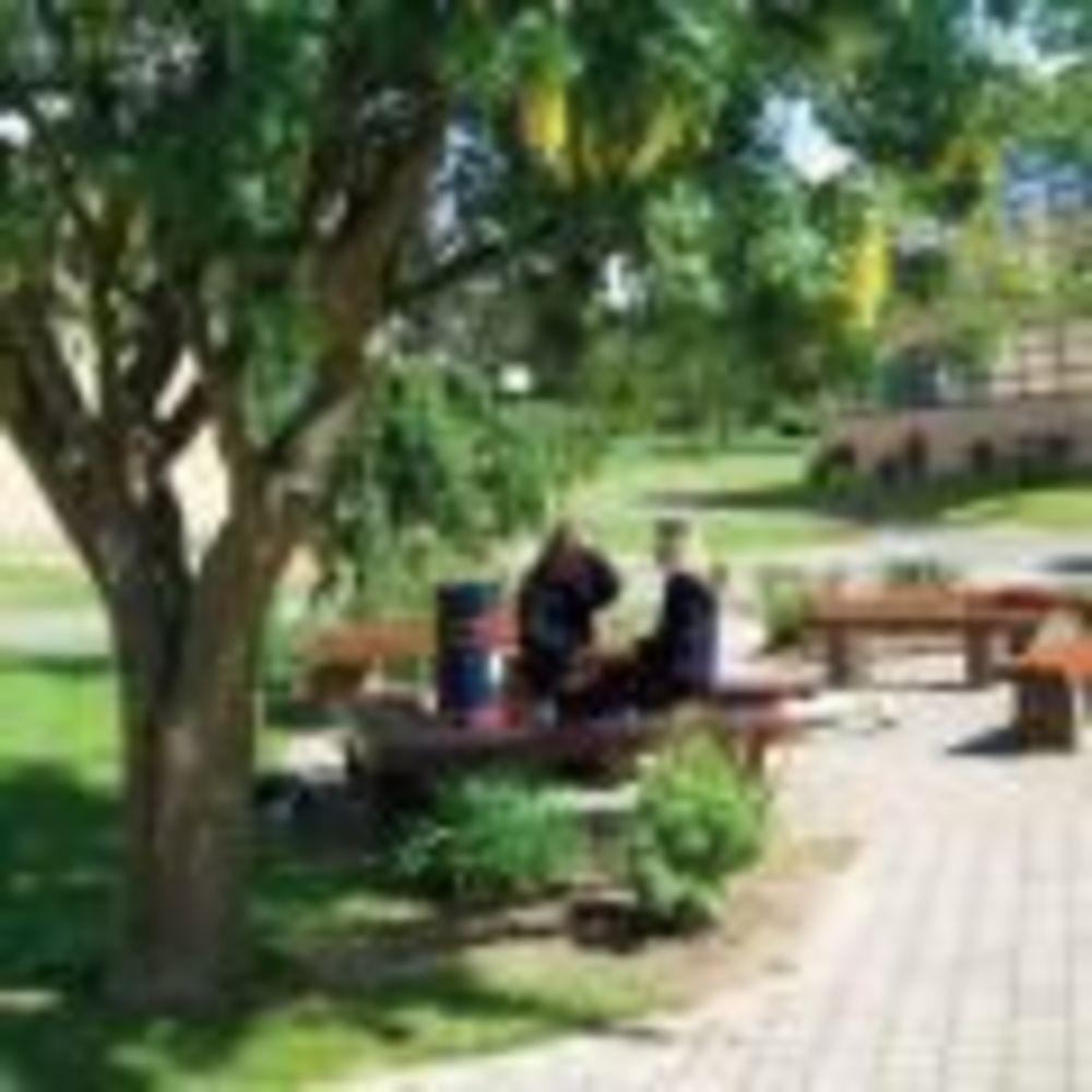 Территория Wesley College