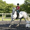 Верховая езда Bede's Eastbourne. Аспект - Обучение за рубежом