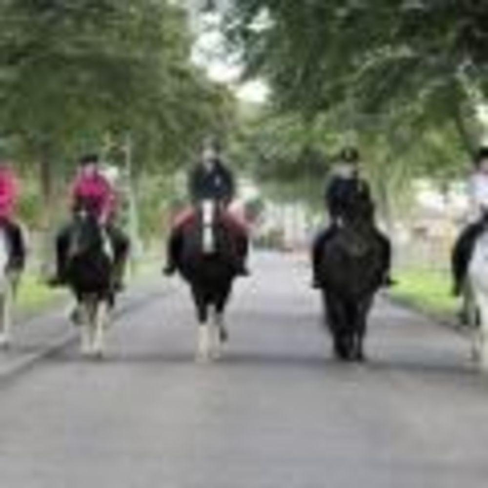 Верховая езда Kilgraston. Аспект - Образование за рубежом.