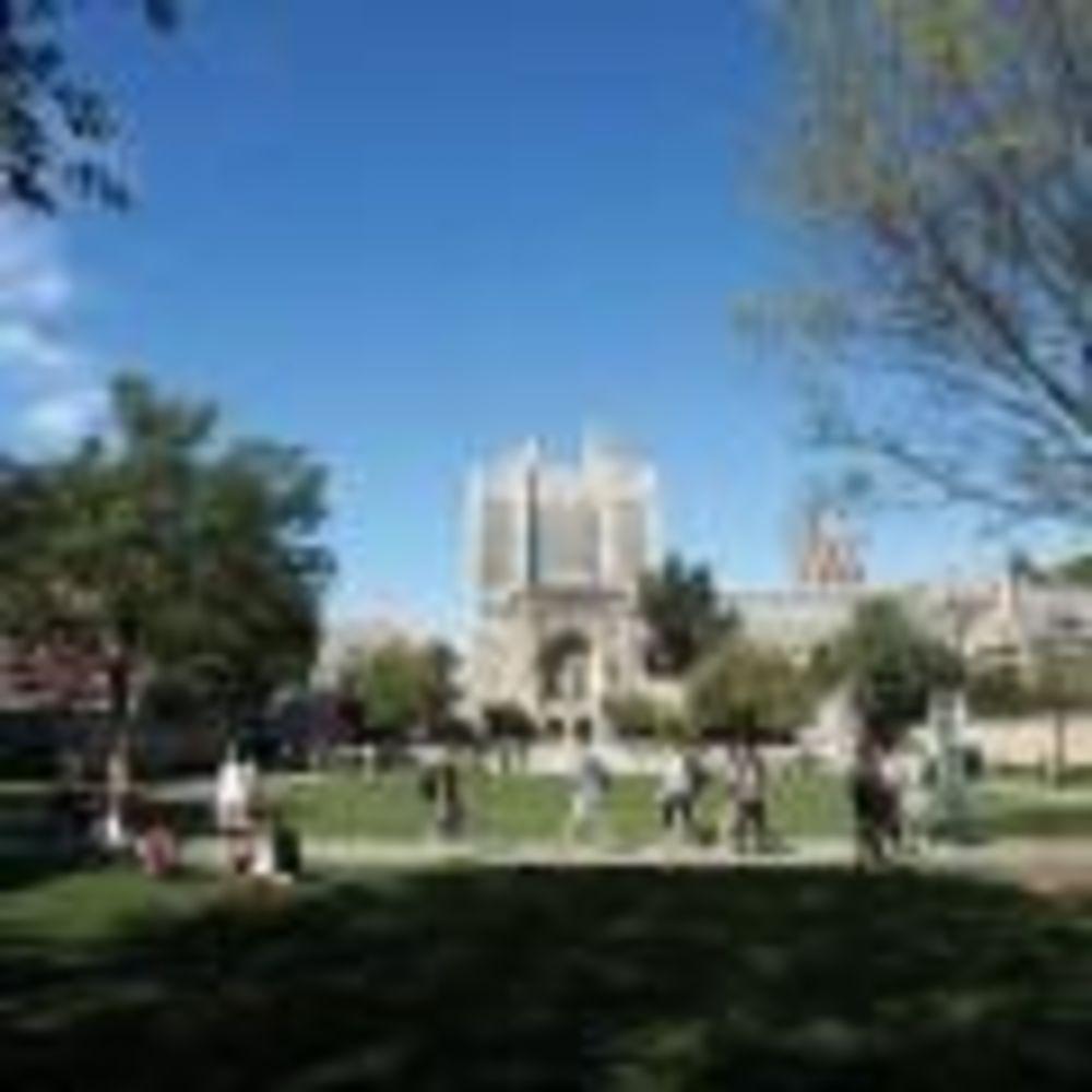 Yale University Redwing Education территория университета